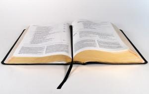 7e7bec1a216cb067_1280_Bible
